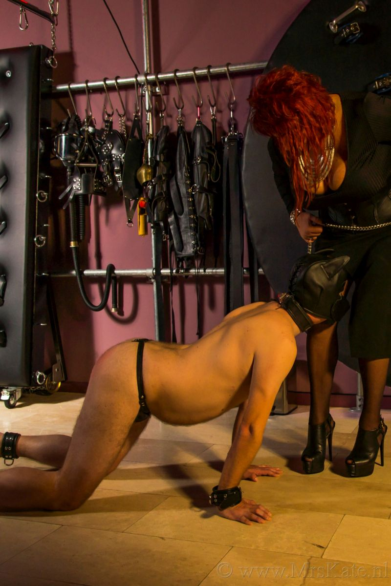 <Doggie play Mrs Kate House of SubMission Den Haag